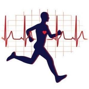 Das Herz trainieren