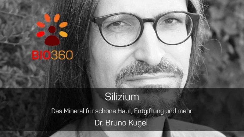 Bruno kugel dissertation – Parts of a literature review apa