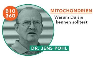 Mitochondrien und warum Du sie kennen solltest