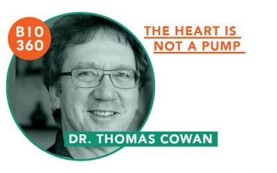 ᐅ The heart is not a pump – Dr. Thomas Cowen
