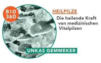 ᐅ Heilpilze: Die heilende Kraft von medizinischen Vitalpilzen