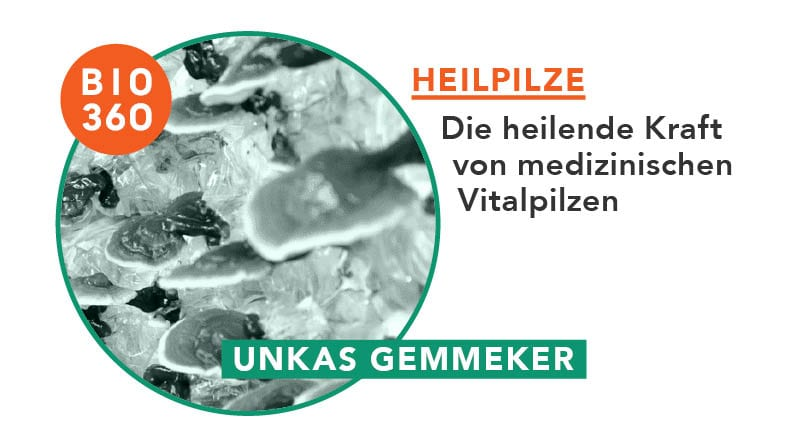 Heilpilze: Die heilende Kraft von medizinischen Vitalpilzen
