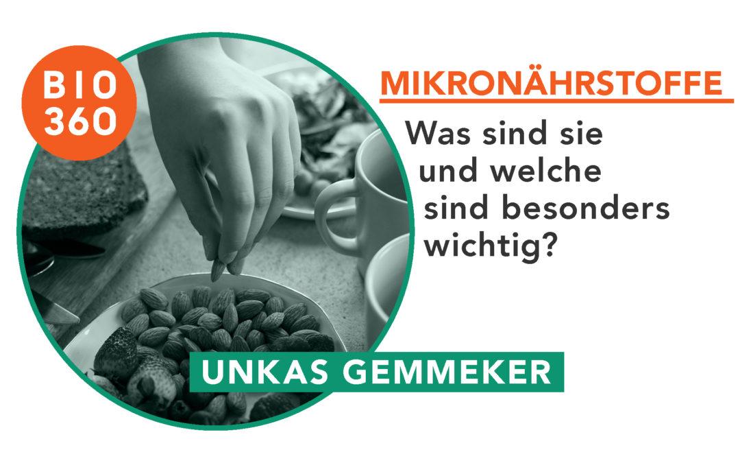 Was sind Mikronährstoffe und welche sind besonders wichtig?