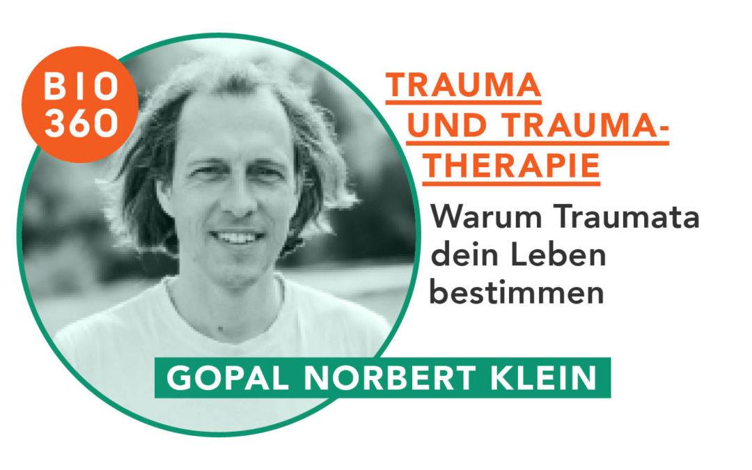 Trauma und Traumata_Gopal Norbert Klein
