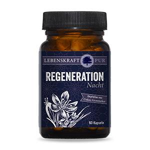 Regeneration Nacht