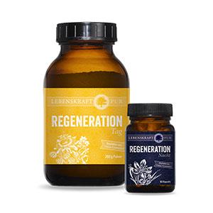Regeneration Tag und Nacht